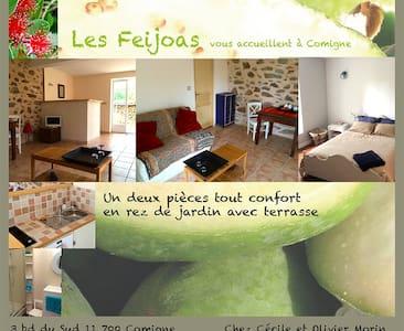 Appartement d'hôte: les Féïjoas - Comigne