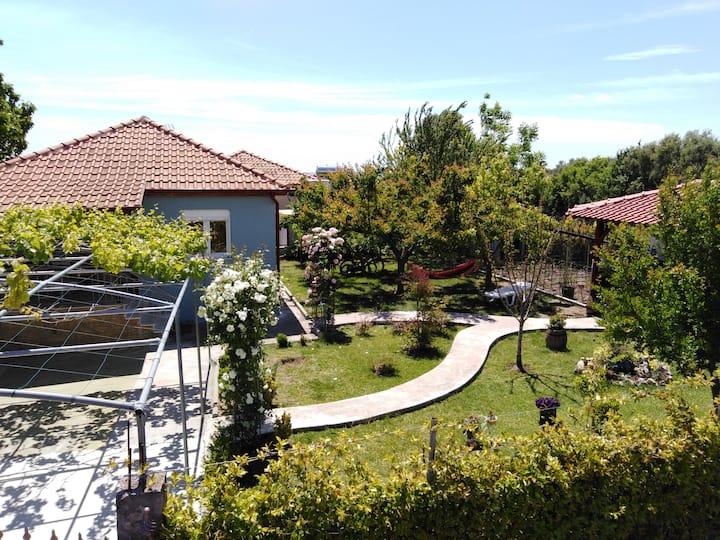 Villa Viktoria  -    Nea Kallikratia  Xalkidiki