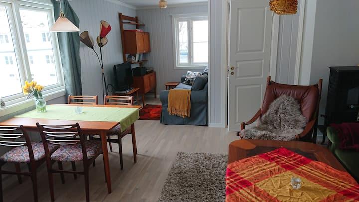 Rjukan - flott romslig leilighet med fin utsikt