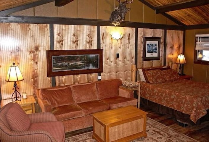 Ski in Ski out Condo at Sunlight - Glenwood Springs - Wohnung