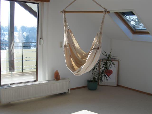 Großzügiges Zimmer mit Küche, Bad und Balkon