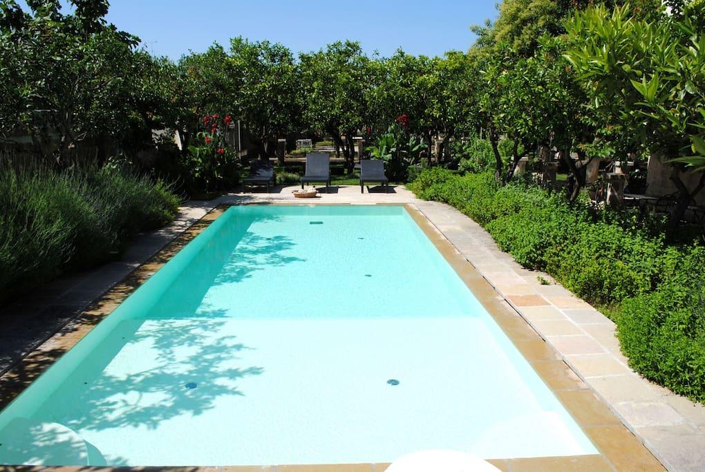 The pool at Palazzo Guglielmo.