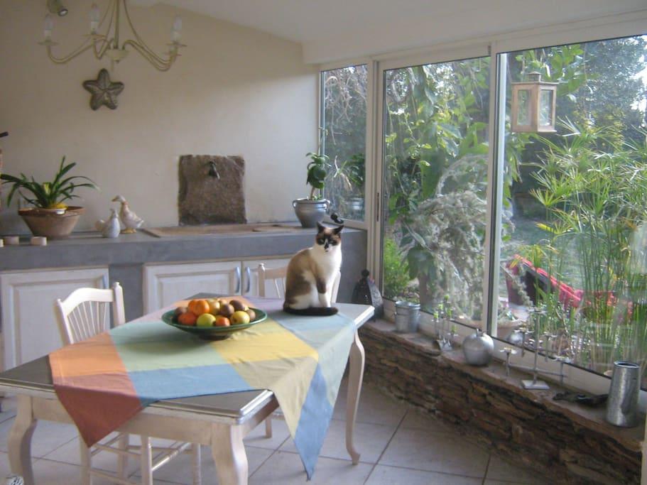 la cuisine donnant sur le jardin...un bonheur le matin au petit déjeuner!