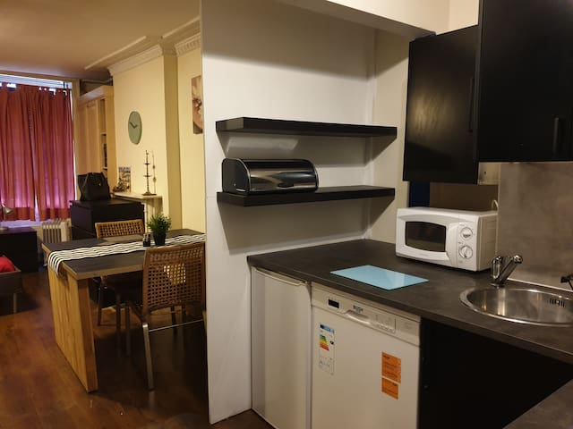 Private Studio Apartment in Central London
