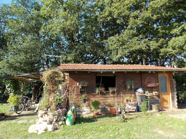 CHALET LEGNO - Tarano - Cottage