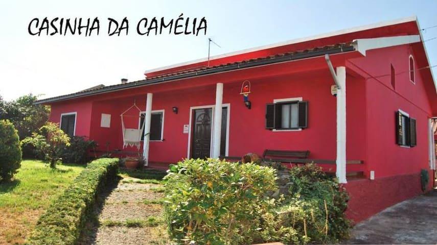 Casa com Jardim e Piscina - São João de Areias - Дом
