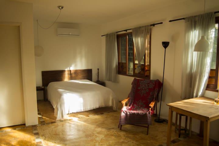 Espaço do Mico (Casa do Lagarto) - Florianópolis