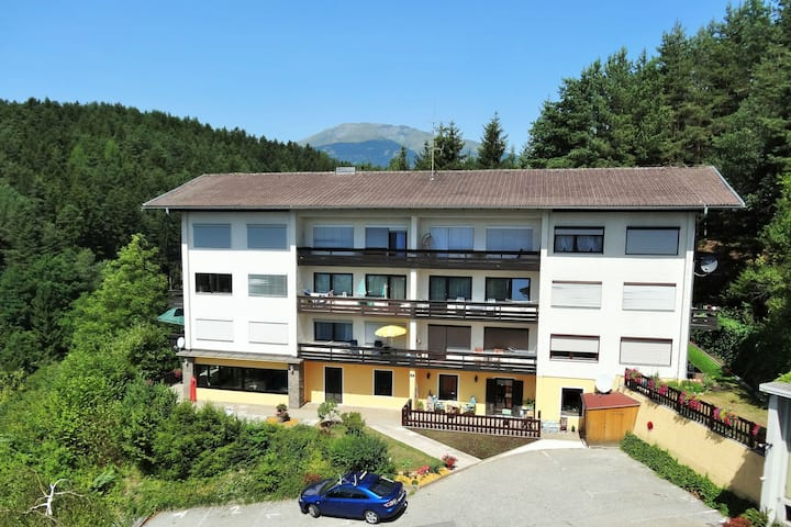 Appartment with views to the Milstättersee and pool in summer