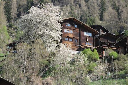 Echtes Walliserhaus in Betten-Dorf - Betten - บ้าน