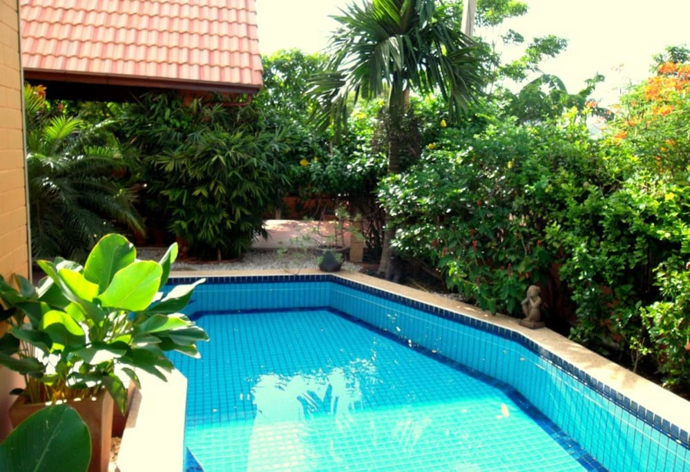 Pool view with garden.