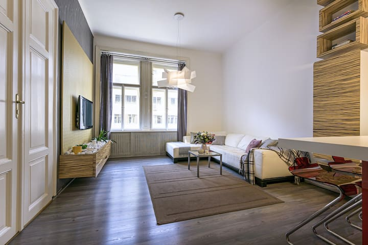 2-BEDROOM SPACIOUS OLD TOWN APARTMENT