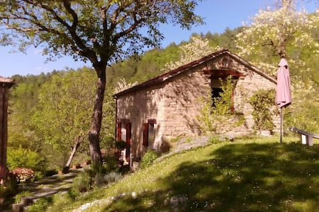 La Casetta in the forest with swimming pool