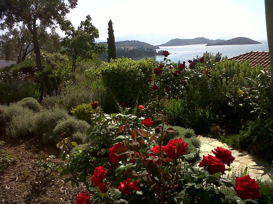 View of Aegean Sea from beautiful gardens, looking towards Skiathos town.