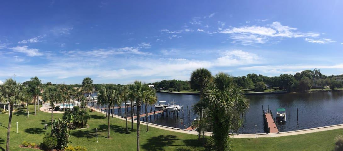 Comfy Private Room on the Hillsborough River - Tampa - Condominium