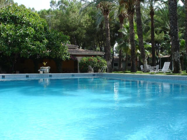 Deluxe villa in a fantastic park of 18000m2 (4p.)