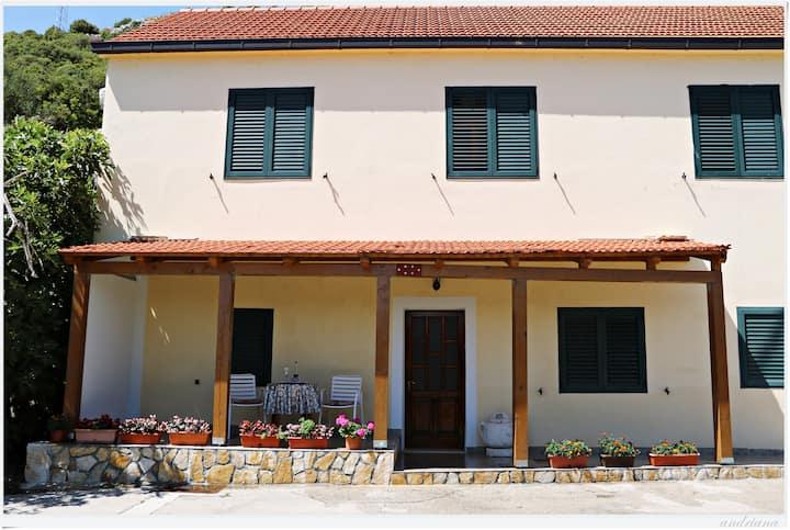Apartman Lovrić