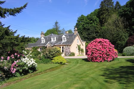 Finglen House   Haven of Traquility cream room - Campsie Glen