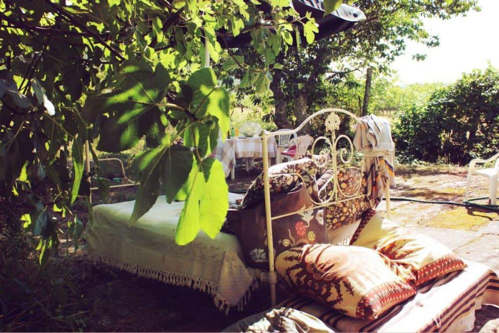 Summer bed in the garden.