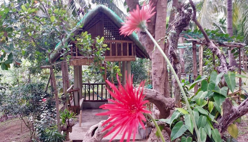 Zallags farm&glamping garden kubo#4 NatureFarmLife