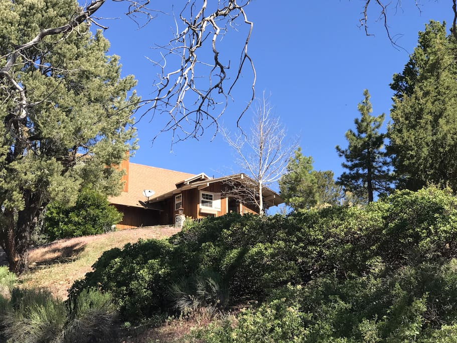 Home is truly isolated at the top of 2 1/2 acres.