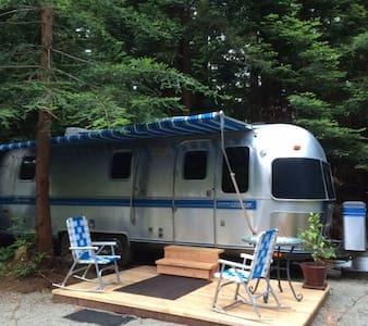 Airstream Trailer in the Redwoods