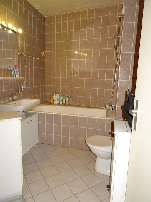 Salle de bain avec baignoire et toilettes.  Bathroom with bathtube and toilets.