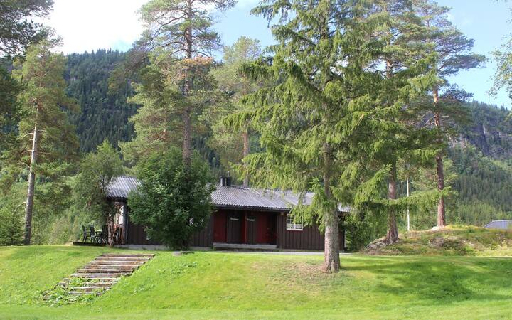 Tveitehaug 2 montain cabin with Wifi and Sauna