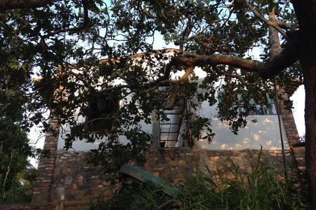 Vila bucólica com vista privilegiada do Paraguaçu