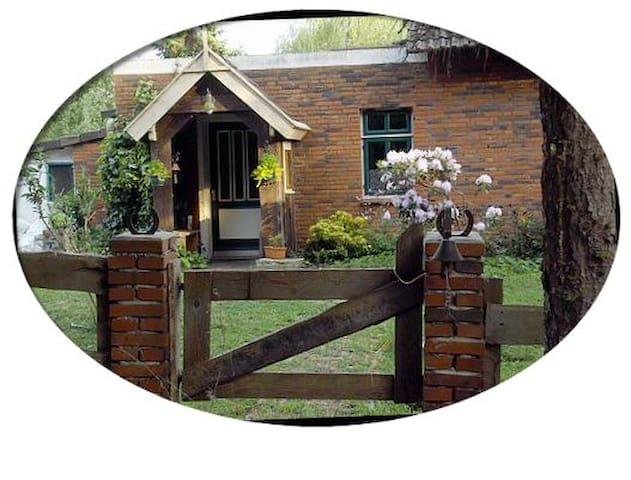 Uriges kleines Ferienhaus im Moor - Rhauderfehn - Huis