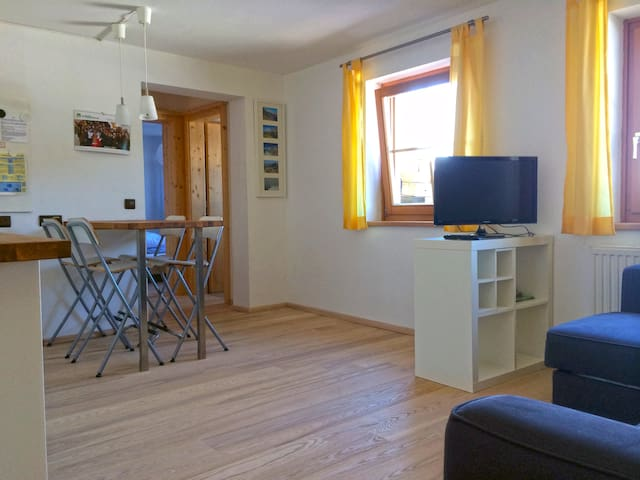 Cosy appartement near the slope - Schladming - Lejlighed
