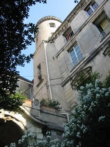 Hôtel particulier de Villeperdrix - Pont-Saint-Esprit - Lägenhet