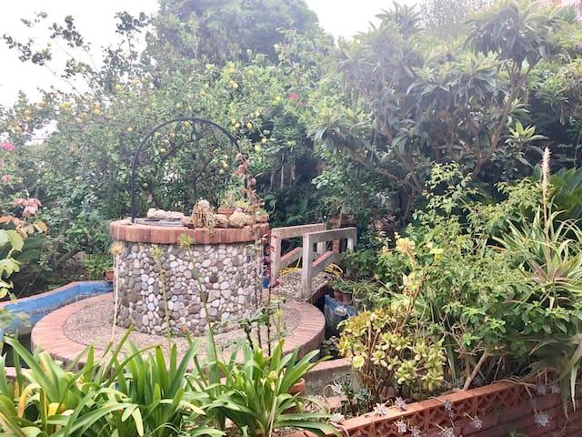 Villa nel verde vicinanze mare