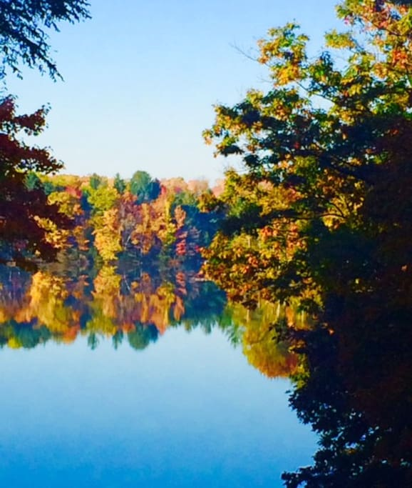 fall colors on my lake