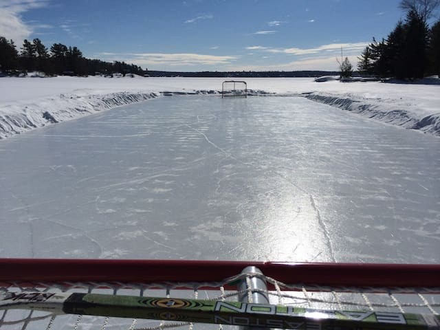 Rink on the lake, perfect for a game of shinny!