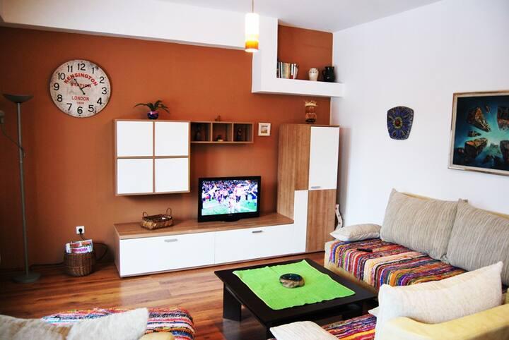 Charming HouseApartment in Novi Sad