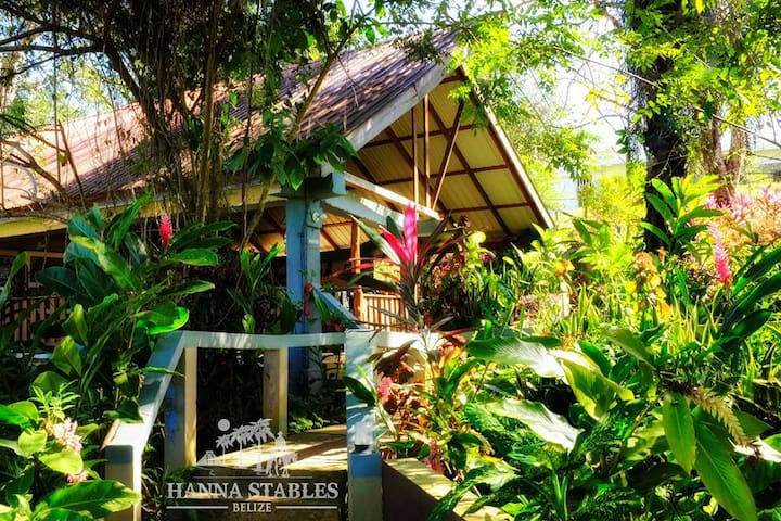 Organic Farm Stay in Cozy Cottages - San Jose Succotz  - กระท่อม