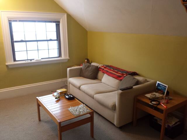 Lovely apartment near Porter Square - Cambridge - Apartment