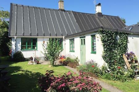 Charming village cottage - House