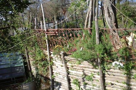 oxygen green garden - Piano di Sorrento