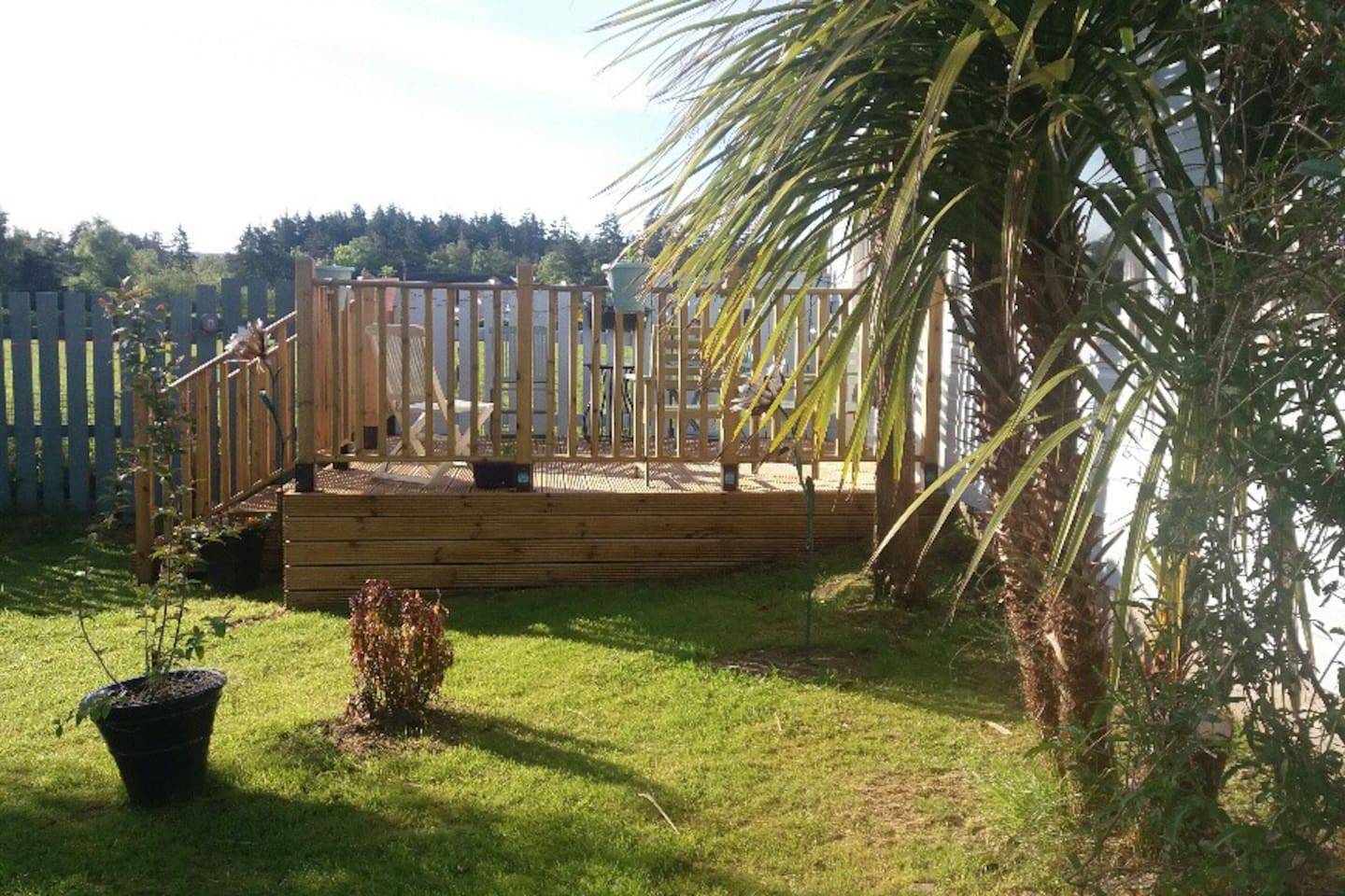 Decking in the morning sun