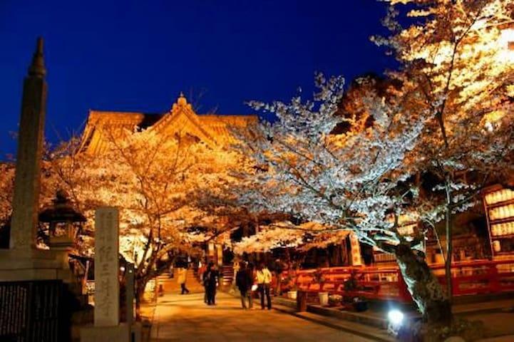 21 和歌山でスローライフを満喫!紀三井寺、黒潮市場魅力がいっぱい。 - Wakayama-shi - Lejlighed