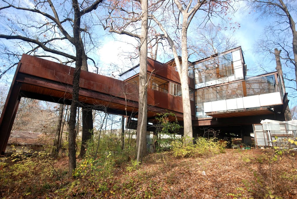 The Glass House Cabin In Georgia : Both floors modern glass tree house houses for rent in