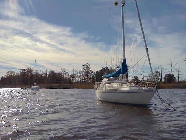 30 Foot Albin Ballad Sailboat, Anchored. - Hilton Head Island