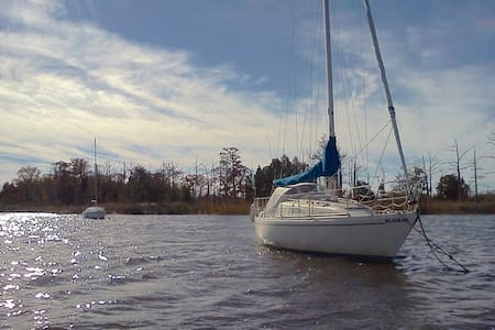30 Foot Albin Ballad Sailboat, Anchored. - Hilton Head Island - Båd