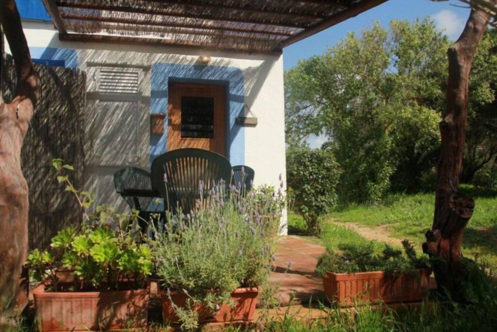 Estudio de madro o casas karen adosados en alquiler en - Casas en canos de meca ...