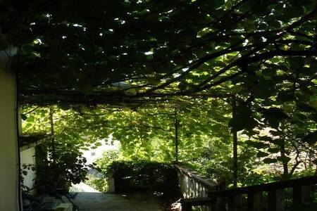 Villa with a garden by the sea in a quiet place - Herceg Novi