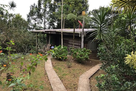 Finca Agroforestal Rainforest #1 - La Tigra