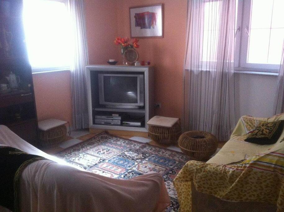 Cosy living room furnished in  (common area)