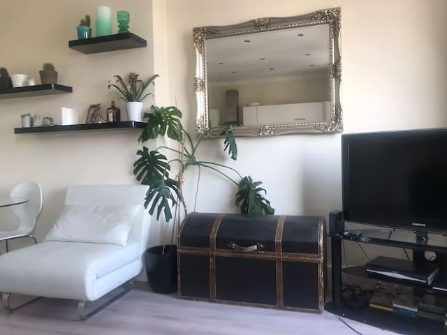 Gorgeous Hackney Apartment