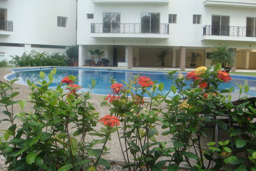 landscaping surrounding the free form pool